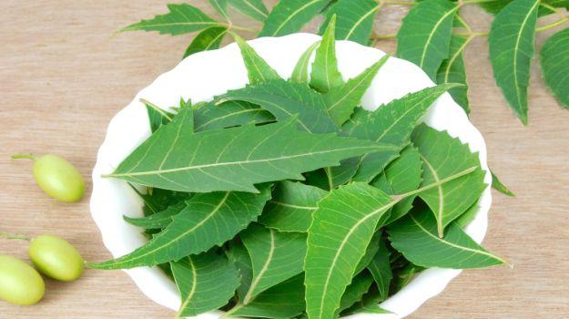 helminthiasis neem)